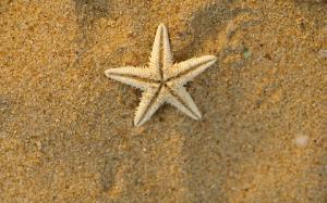 arena y estrella pequeña