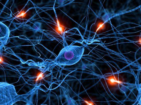 neuronacomunicar